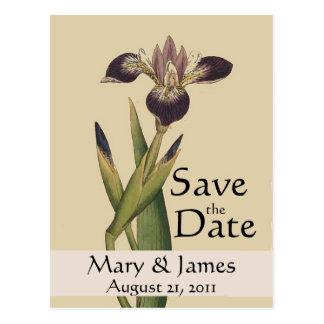 Reserva del iris de Botanicals del vintage la Tarjeta Postal