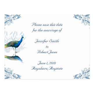 Reserva del jardín del pavo real la fecha postales