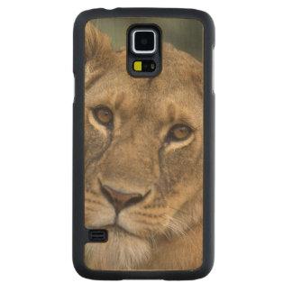 Reserva del juego de África, Kenia, Mara del Funda De Galaxy S5 Slim Arce