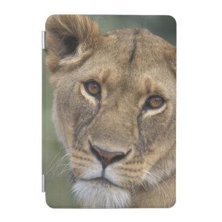 Reserva del juego de África, Kenia, Mara del Cubierta De iPad Mini