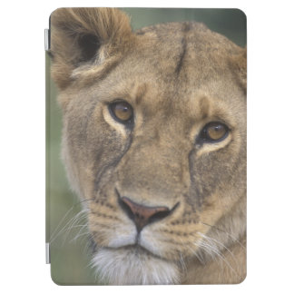 Reserva del juego de África, Kenia, Mara del Masai Cover De iPad Air