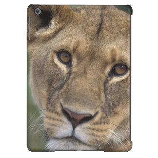 Reserva del juego de África, Kenia, Mara del Masai