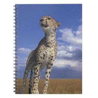 Reserva del juego de África, Kenia, Mara del Masai Libro De Apuntes Con Espiral