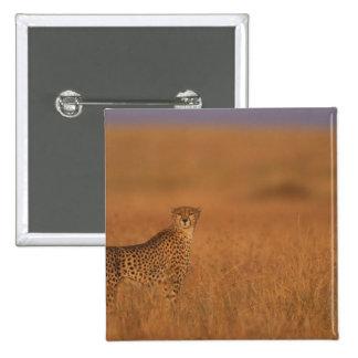 Reserva del juego de África Kenia Mara del Masai Pin