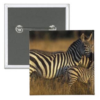Reserva del juego de África, Kenia, Mara del Masai Pins