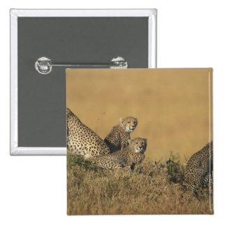 Reserva del juego de África, Kenia, Mara del Masai Pin Cuadrada 5 Cm