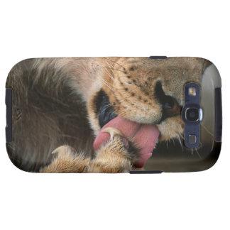 Reserva del juego de Hluhluwe Umfolozi, Kwazulu Na Samsung Galaxy S3 Protector