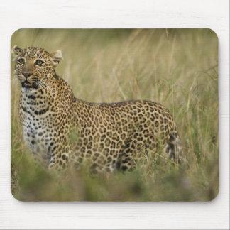 Reserva del juego de Kenia, Mara del Masai. Africa Mousepads