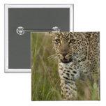Reserva del juego de Kenia, Mara del Masai. Africa Pin Cuadrada 5 Cm