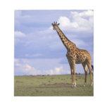Reserva del juego de Kenia, Mara del Masai. Jirafa Libreta Para Notas