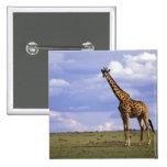 Reserva del juego de Kenia, Mara del Masai. Jirafa Pin Cuadrada 5 Cm