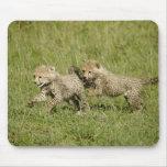 Reserva del juego de Mara superior, Mara del Masai Tapete De Ratón