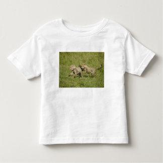 Reserva del juego de Mara superior, Mara del Camisetas