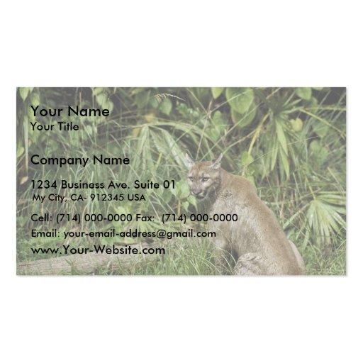 Reserva del nacional de la pantera de la Florida Tarjeta De Visita