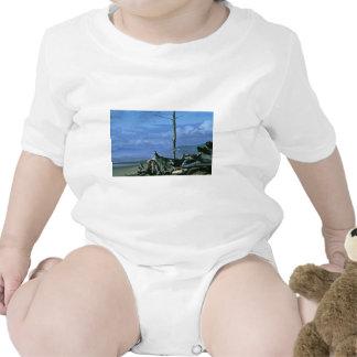 Reserva del nacional de Meareas del cabo Camiseta