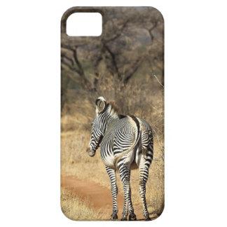 Reserva del nationale de Samburu, Kenia iPhone 5 Case-Mate Cárcasas