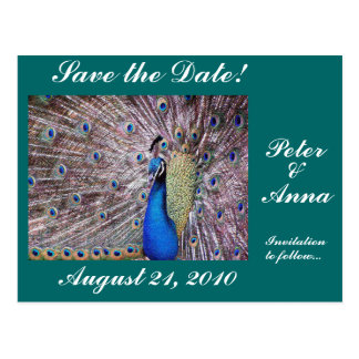 Reserva del pavo real la postal de la fecha