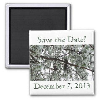 Reserva del pino del invierno el imán de la fecha