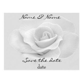 reserva del rosa blanco la postal de la fecha