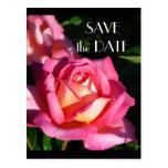 Reserva del rosa la postal de la fecha