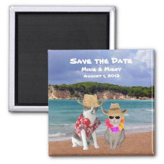 Reserva divertida del boda de playa de los gatos l imanes para frigoríficos