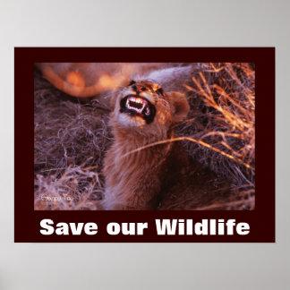 Reserva feliz del Tau nuestro poster de la fauna