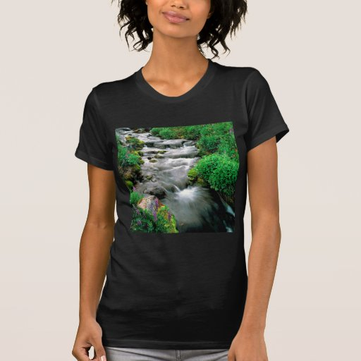 Reserva india de Adams Yakima del soporte del río Camisetas