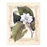 Reserva meridional del boda de la magnolia blanca  invitacion personalizada