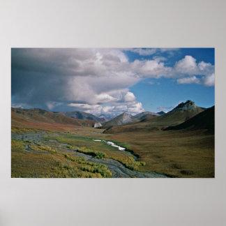 Reserva nacional ártica póster