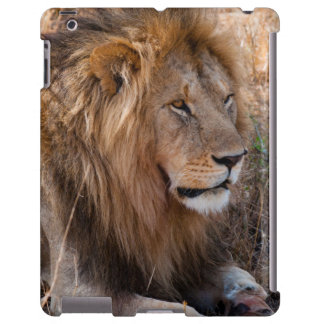 Reserva nacional de Maasai Mara del león, Kenia Funda Para iPad