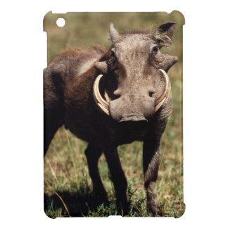 Reserva nacional de Maasai Mara, desierto Warthog