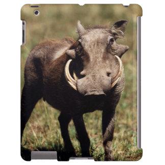Reserva nacional de Maasai Mara, desierto Warthog Funda Para iPad