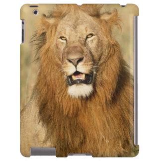 Reserva nacional de Maasai Mara, león masculino Funda Para iPad