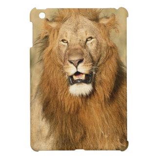 Reserva nacional de Maasai Mara, león masculino