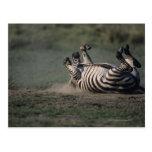 Reserva nacional de Mara del Masai, Kenia 2 Postal