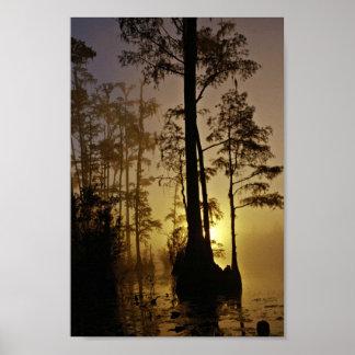 Reserva nacional de Okefenokee Georgia Impresiones
