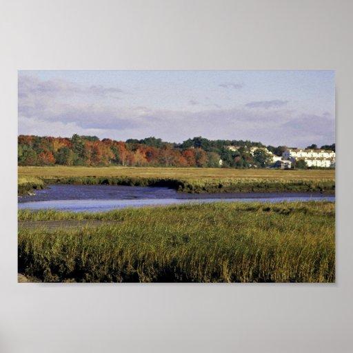 Reserva nacional de Raquel Carson, Maine Poster