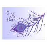 Reserva púrpura de la pluma del pavo real la tarjetas postales