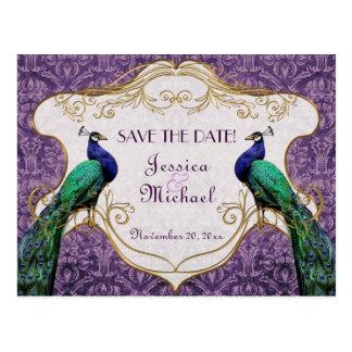 Reserva (púrpura) real del pavo real la postal de