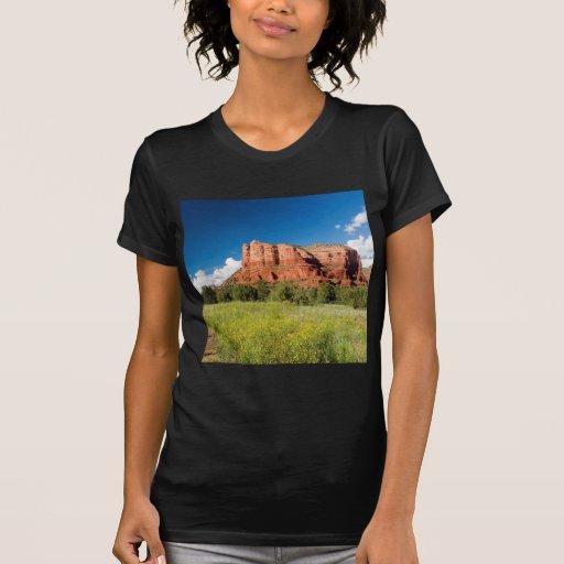 Reserva roja de la roca del barranco de la natural playera