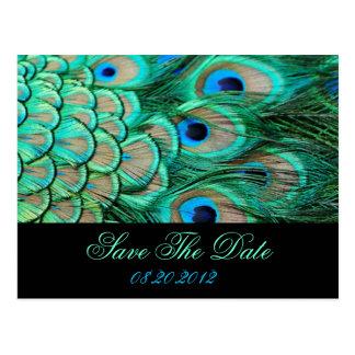 reserva romántica del boda del pavo real del tarjetas postales
