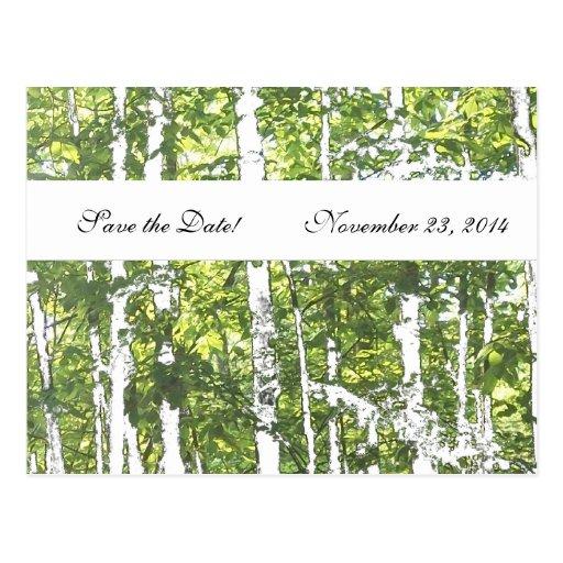 Reserva rústica de maderas verdes y blancas la tarjetas postales