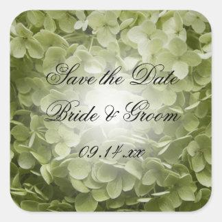 Reserva verde del boda del Hydrangea de Annabelle Pegatina Cuadrada