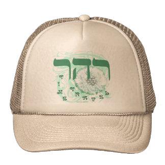 RESH HEY RESH ~ TIME TRAVEL TRUCKER HAT