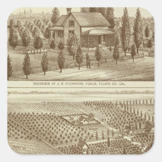 Residence, nursery, stable, Visalia, Cal Square Sticker