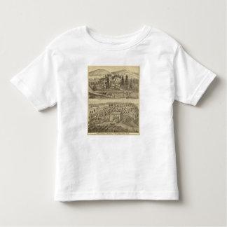 Residence of AP Howard Hancock Toddler T-shirt