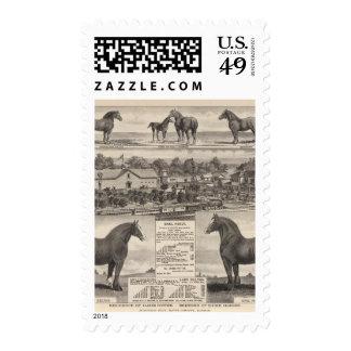 Residence of James Potter, Junction City, Kansas Stamps