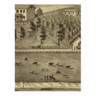 Residence of William Schrader Postcard