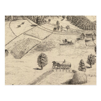 Residences and farm in New Haven Postcard