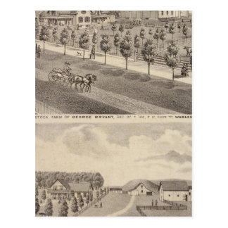 Residences and Farm, Minnesota Postcard